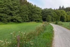 Von der Strasse zum Eifgenbach