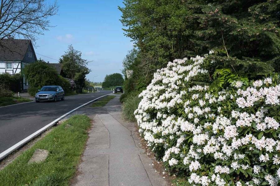 Lange Strecke entlang der Kreisstrasse
