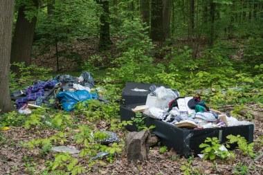 Müllablage im Naturschutzgebiet