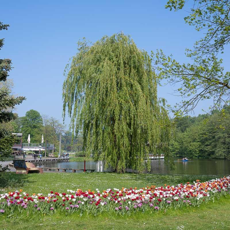 Am Ausgang des Westfalenparks
