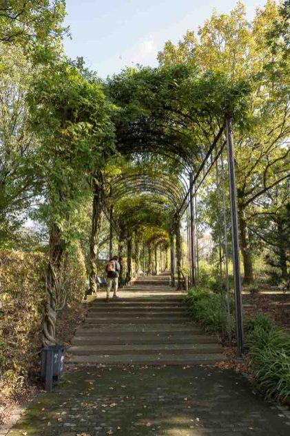 Im Park neben dem Wasserturm