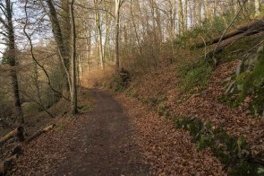 Schöner Waldweg hinter dem Hasensprung