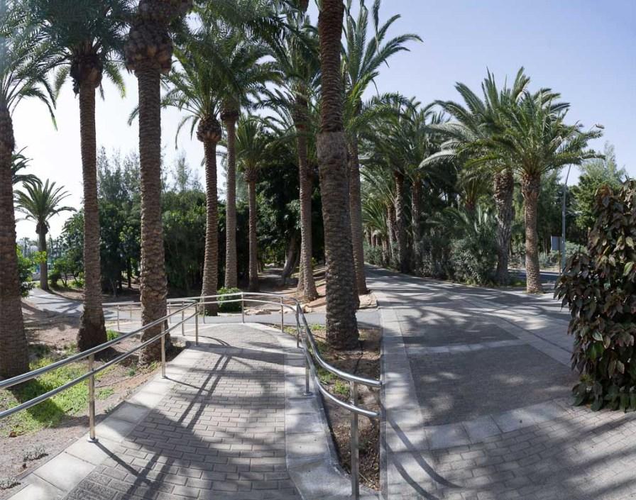 Kilöometerlanger Weg unter Palmen