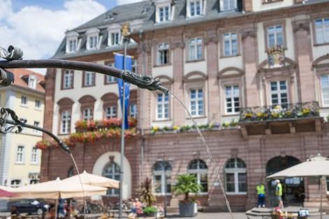 Wasserspeier in der Altstadt