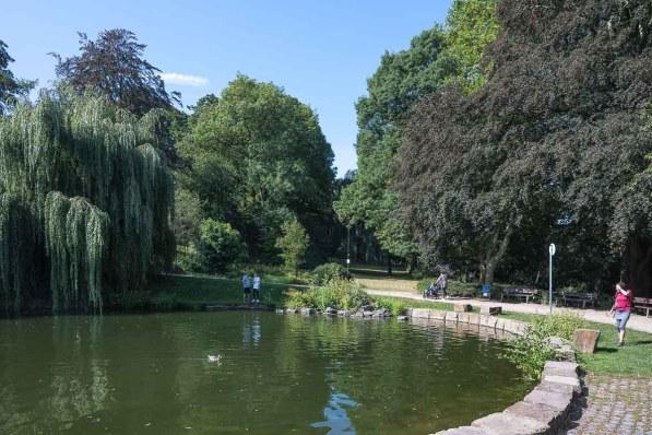 Teich im Hagener Stadtpark