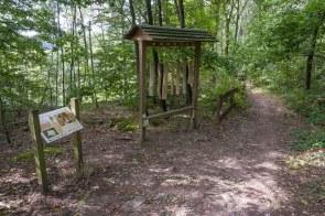 Lehrreiche Station im Wald