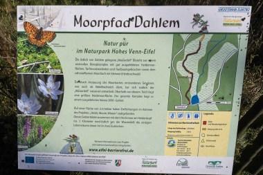 Info Tafel zum Moorweg