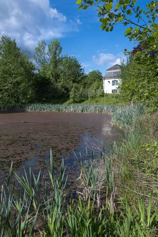 Kleiner Teich in Klosternähe