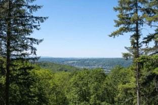 Lücke im Wald mit Blick in Richtung Eifel