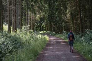 Unterwegs im Schleifbachtal