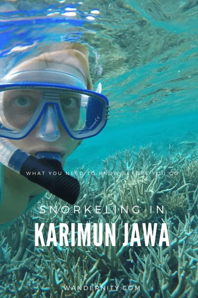 Snorkeling In Karimun Jawa Islands Wandernity