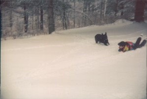 Sledding with my dog Waterbury, Vermont Jan 1995