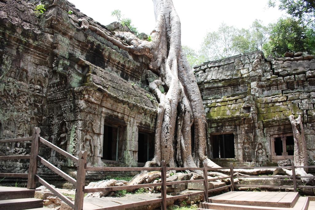 Ta Prohm Temple, Siem Reap Cambodia May 2017