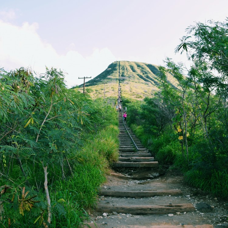 hike Koko Crater fantastic guide of spots to explore on Oahu