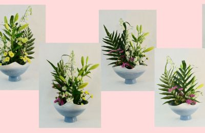 All-rounder Ikebana in Progression