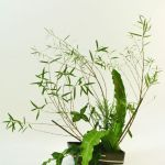 willow ikebana