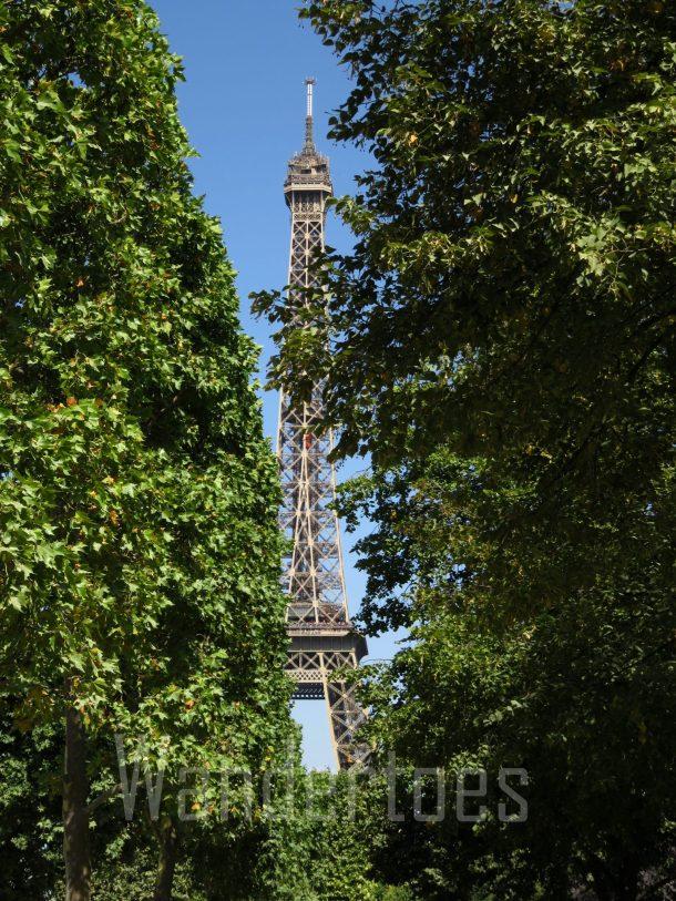 EiffelTreesHidden