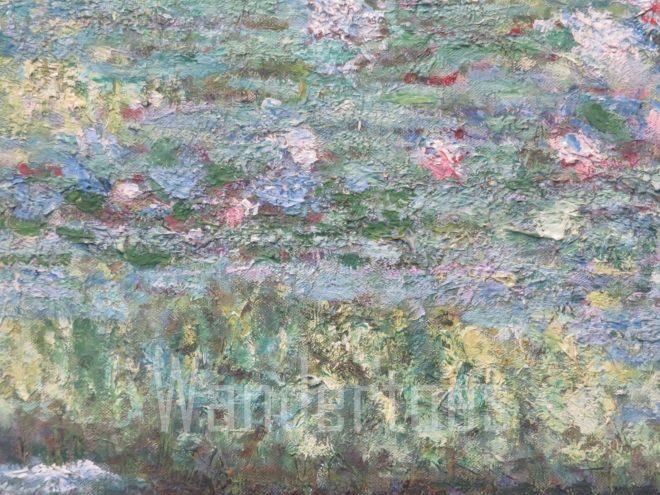 MonetMacro Watermark