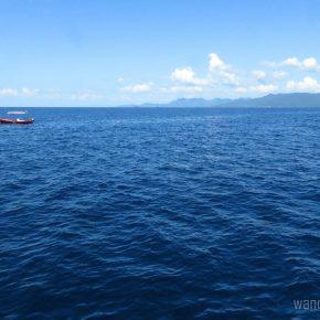 Thailand: Snorkeling a Sunken Ship