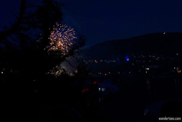 Partial firework showing around silhouette of tree blocking view.  Traveling Happy when plans ruined.