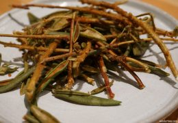 Labrador Tea.  Foodie Travel, St. Roch, Quebec City
