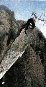 Massif de Fontainebleau de J. Loiseau - 04 - couleur