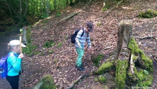 Wandern_Steckeschlääferklamm_Rundweg_20140525-130