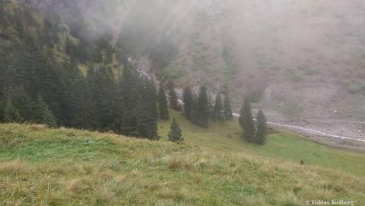 Wandern_PwC_Gipfelstuermer_2014_Tag2_Tobias_042