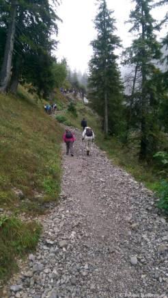 Wandern_PwC_Gipfelstuermer_2014_Tag2_Tobias_052