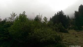 Wandern_PwC_Gipfelstuermer_2014_Tag2_Tobias_143