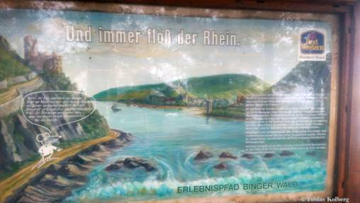 Wandern_20141103_Baumgeistertour_Rundweg_Tobias_035