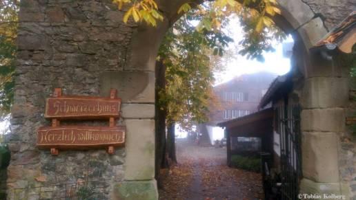 Wandern_20141103_Baumgeistertour_Rundweg_Tobias_051