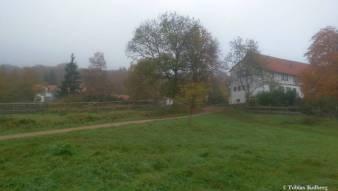 Wandern_20141103_Baumgeistertour_Rundweg_Tobias_093