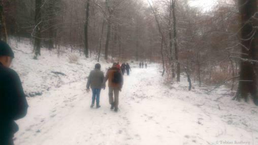 Wandern_20150125_Anwandern_2015_Rundweg_Tobias_027