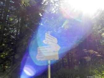 Wandern_20150912_Gipfelstürmer2015_Tag2_096