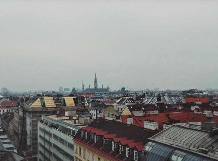 Vienna from the Rooftop | Wanderwings