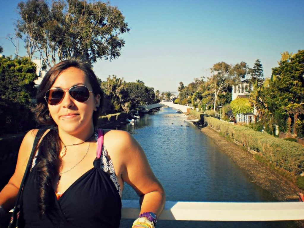 Wanderwings in Venice, California