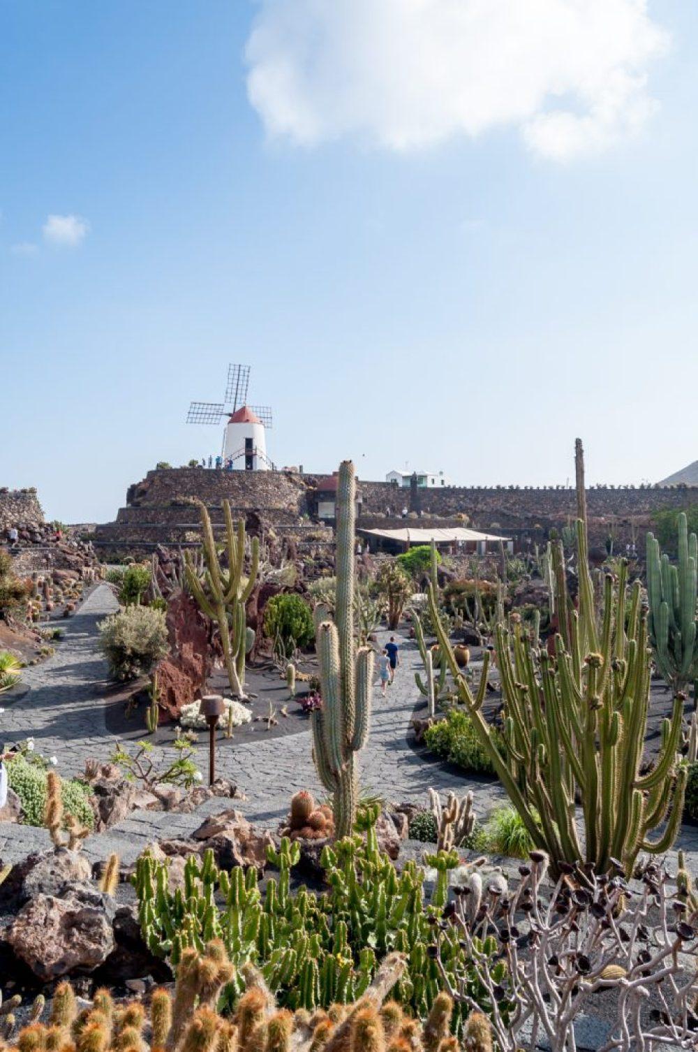 Jardin de Cactus (CACT Lanzarote) || Wanderwings.com