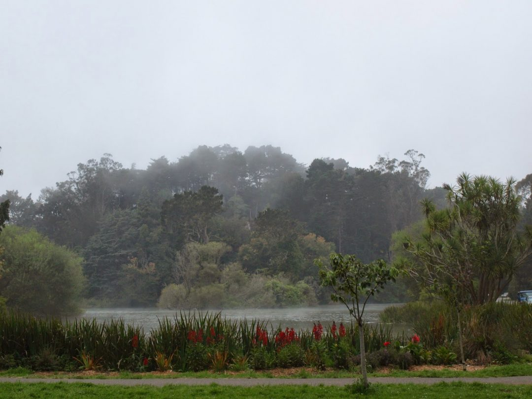 Golden Gate park (San Francisco) | Wanderwings
