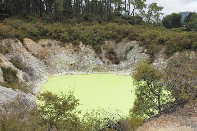 Rotorua Sulphur pools