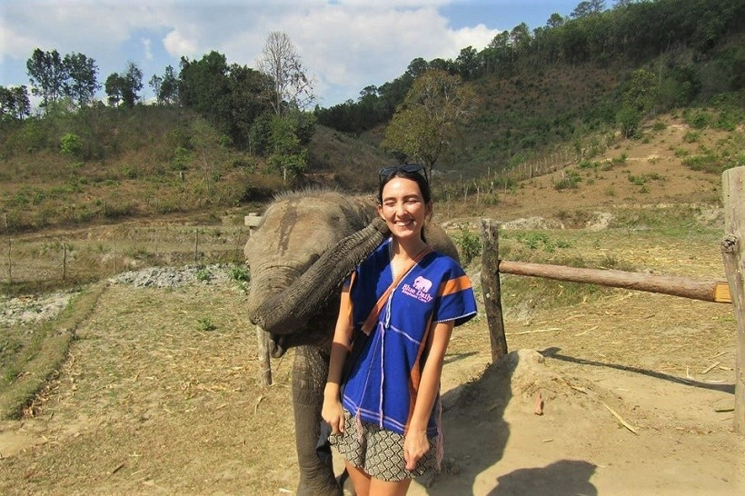 Meeting Elephants Chiang Mai