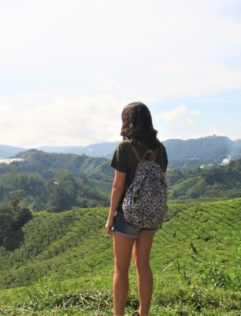 Cameron Highlands Tea Blog Review