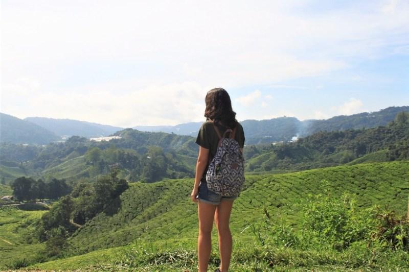 Cameron Highlands Tea Blog Review