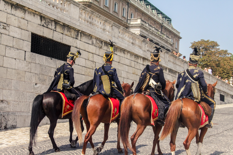 Horses and guards at Buda Castle