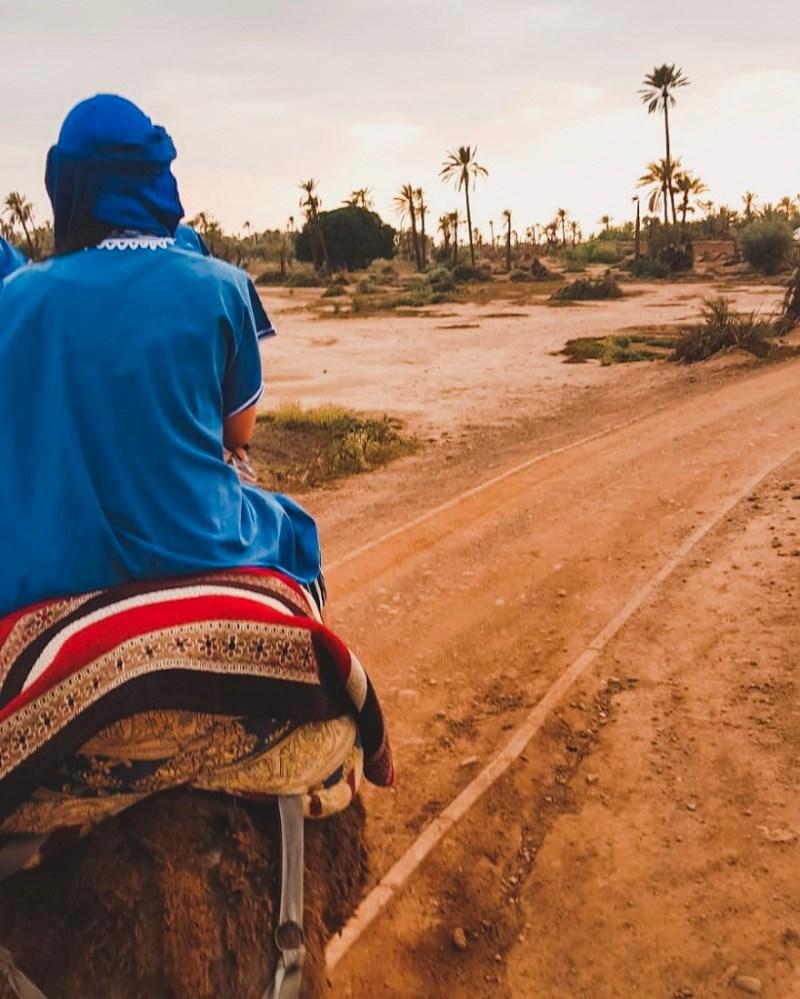 Camel riding tour in Marrakech