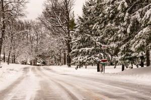 snowy Minnesota - wander with melissa
