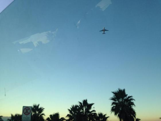 A blue and yellow sky, featuring palm tree shadows and a plane.