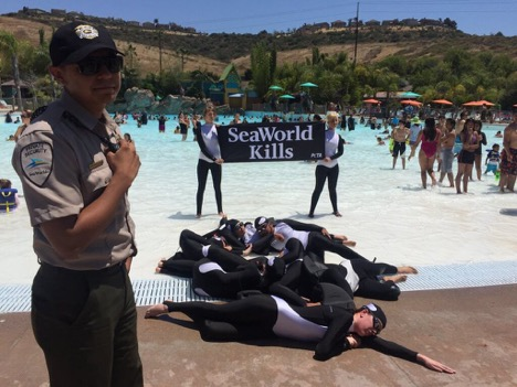 "Protesters holding a sign saying ""SeaWorld Kills"""