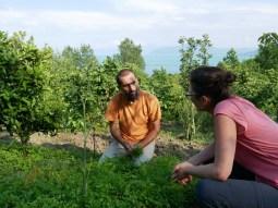 Diskutieren während dem Kräuter und Salatsammeln.// Discussing while picking salad and herbs.