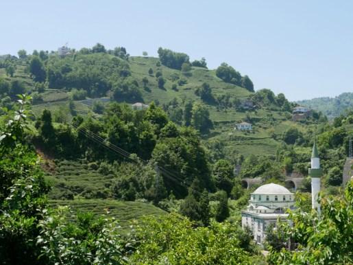 Tee in der Osttürkei.